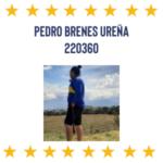 Pedro Brenes